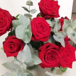 roses-rouges