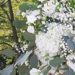 fleurs jeanne