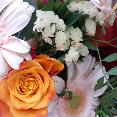 fleurs izaline 1