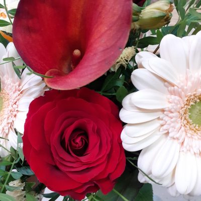 fleurs izaline 3