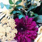 fleurs zita